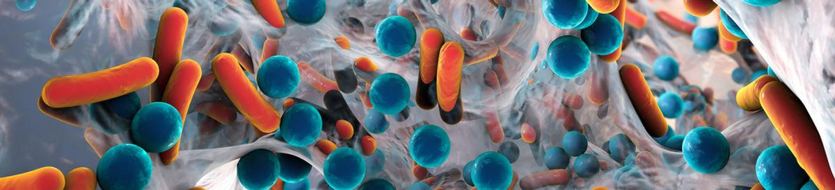 JenAct Ltd - Bacteria Image