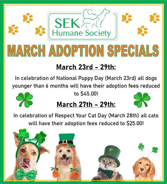 2020 March Adoption Specials.jpg