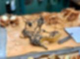 Lucia - leopard print.jpg