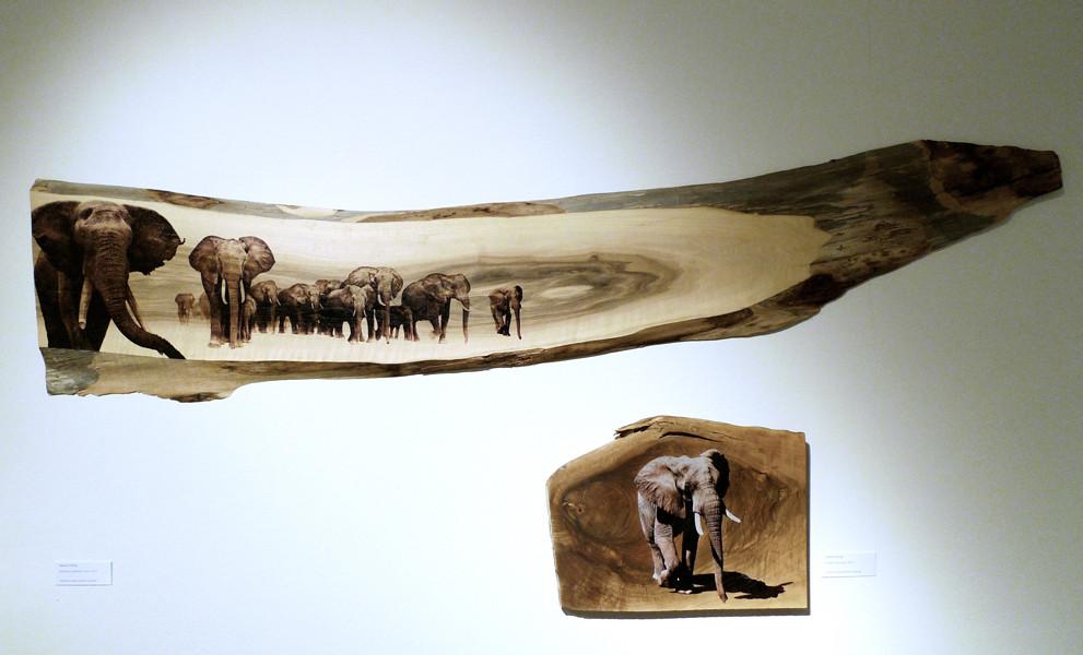 elephants auf Nussholz