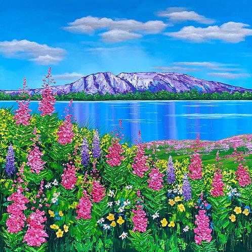 Susitna Wildflowers