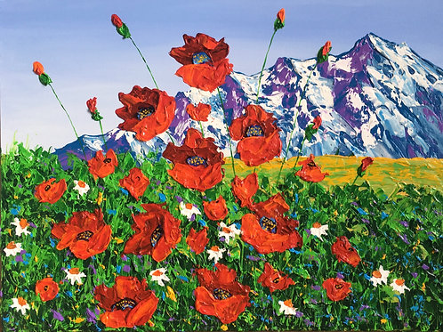 Alaska Poppy Field