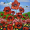 Thumbnail: Poppies II