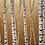 Thumbnail: Gold Sentinels IV