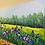 Thumbnail: Iris Spring II