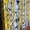 Thumbnail: Aspen Sonata II