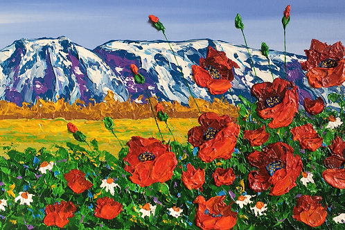 Mt. Susitna Splendor