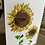 """Thumbnail: Set of 5 painted Sunflower greeting cards 5"""" x 7"""""""