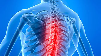 image of spine | chiropractic manipulation