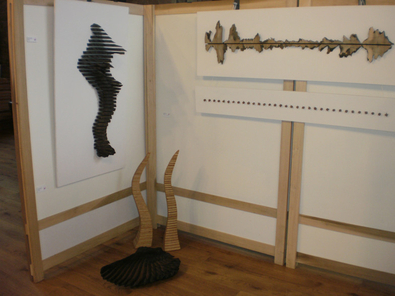 The Young Open Exhibition 2014