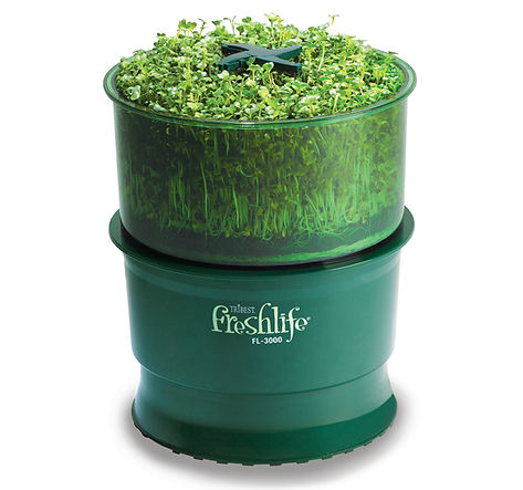Freshlife  sprout easy growing