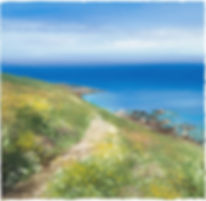 a painting of a coastal path in cornwall by Amanda Hoskin
