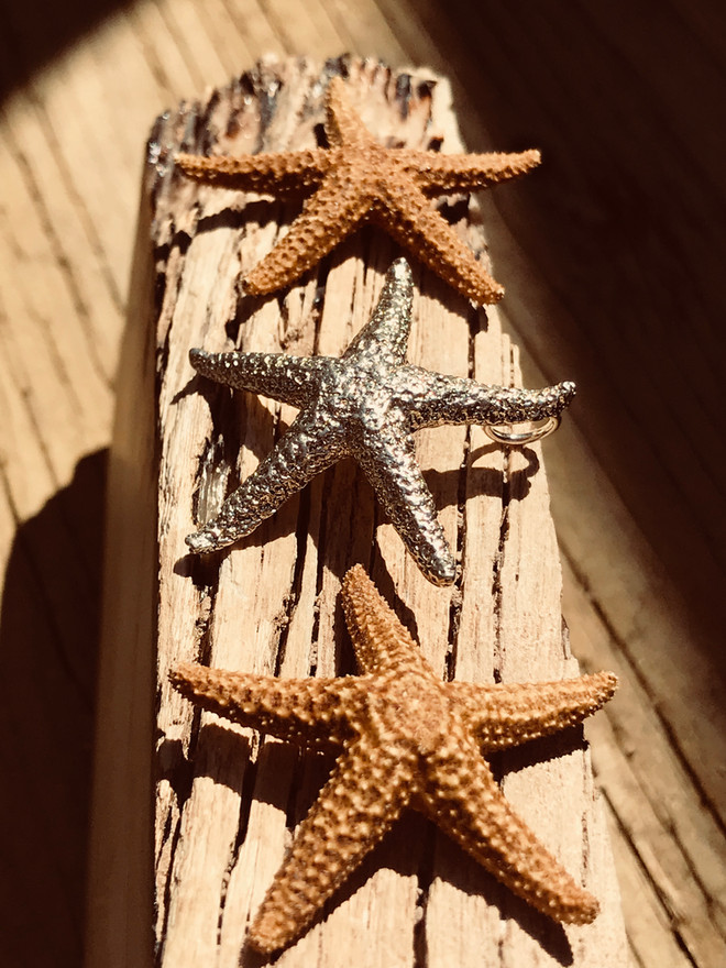 Starfish cast into Sterling Silver