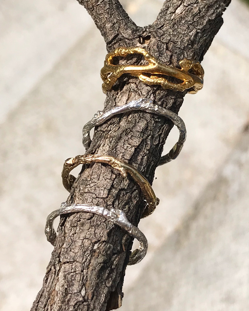 Tree Branch Rings