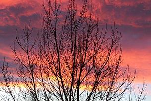 Alberta Sunset_IMG_6124.jpg