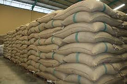 grain bag.jpg