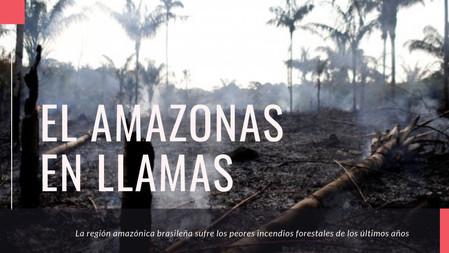 Conservar el Amazonas es esencial para conservar nuestro planeta