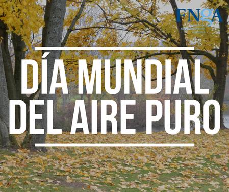 15 DE NOVIEMBRE: DÍA MUNDIAL DEL AIRE PURO