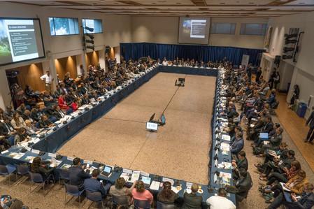 Under2 le habla a los líderes del G20 a través de su Co-chair