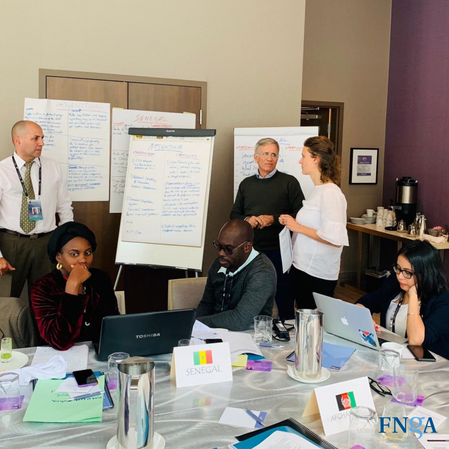 La Directora Ejecutiva de la FNGA trabajando en la promoción del espacio cívico
