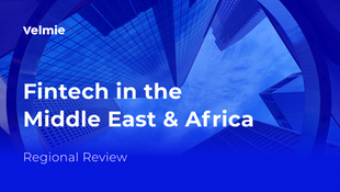 Fintech in the Middle East and Africa: Regional Review