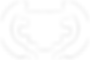 OFFICIALSELECTION-ChicagoComedyFilmFesti