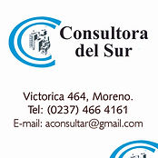 Inmobiliaria Consultora del Sur