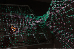 RDN at ARS ELECTRONICA 2017