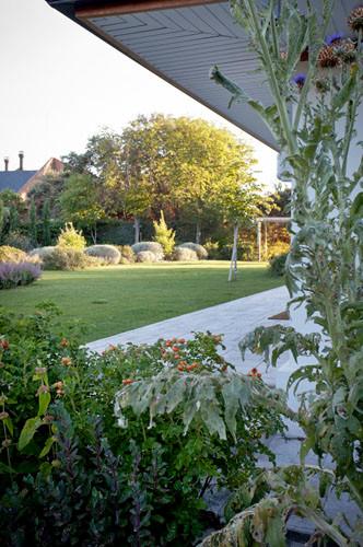 Detalle de jardin – Freehand Arquitectura paisajismo