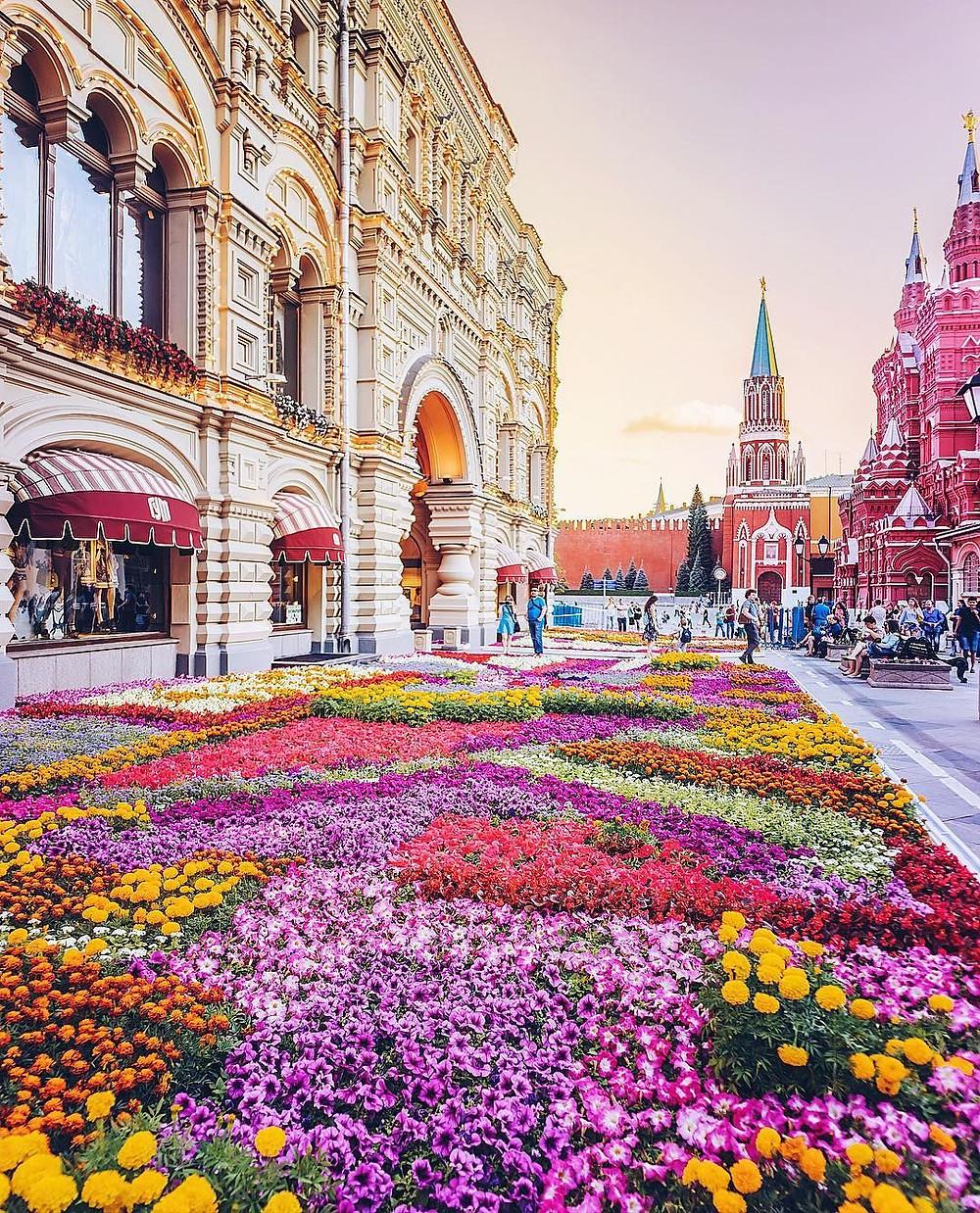 تتميز مدينة موسكو بكثرة الورود الطبيعية في الشوارع والحدائق