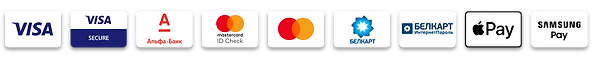 logo-pay.png