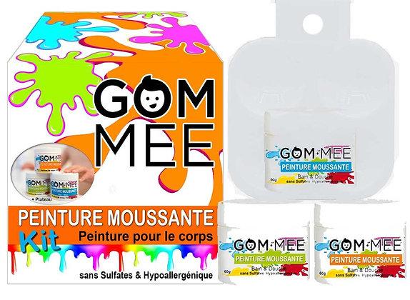NETTOYANT PEINTURE MOUSSANTE CORPS BOÎTE DE 3 X 60G BL-VR-OR | GOMMEE
