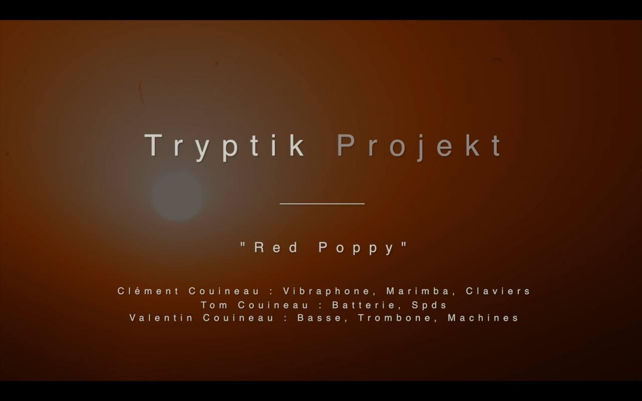 Tryptik Projekt