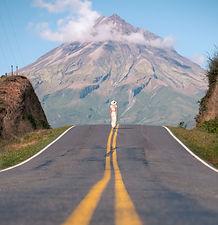 Mount Taranaki Road shot Travel Guide the CJ Way Photography
