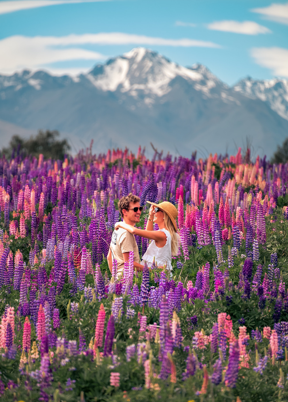 travel couple in a field of lupins with mountains in background at lake tekapo