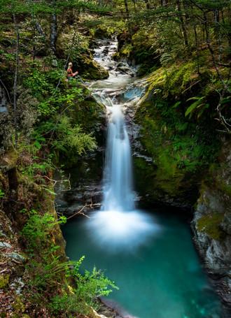 Mt Crichton Loop Falls