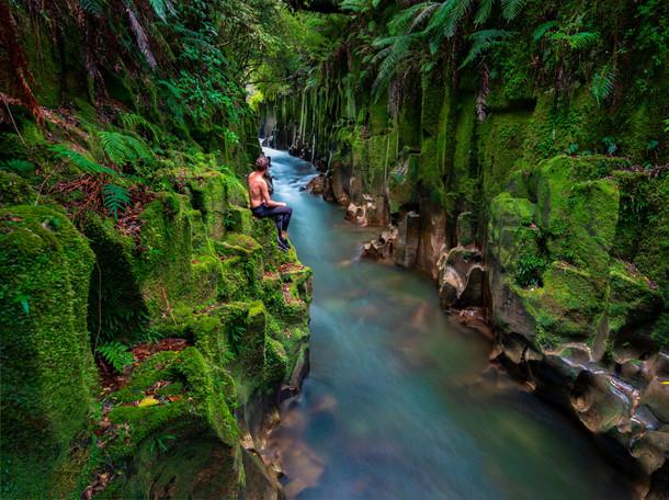 Whirinaki Canyon 3