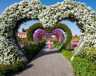 Miracle Gardens