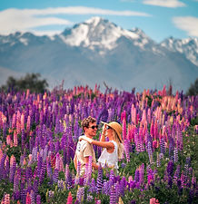 Tekapo Lupins Travel Guide the CJ Way 2019 2020 NZ Photography
