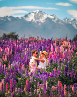 Frolicking in the Lupins