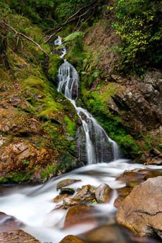 Mini Wainui Falls