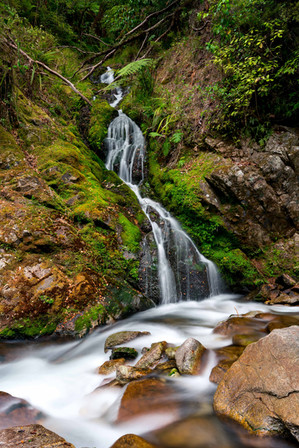 Wainui Falls New Zealand