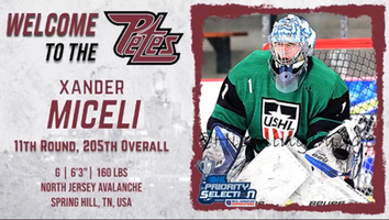 Xander Miceli drafted to OHL