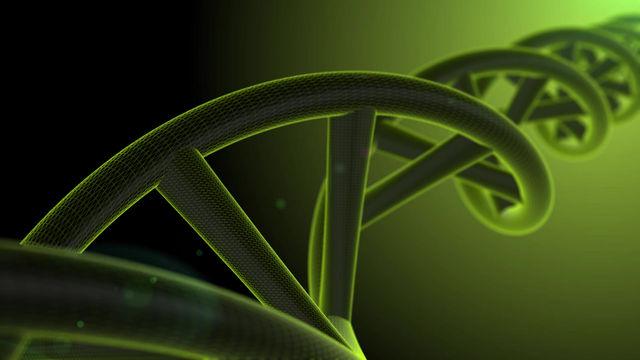 Información genética sobre el origen del Cáncer
