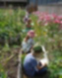 Children in Pender School Garden.jpg