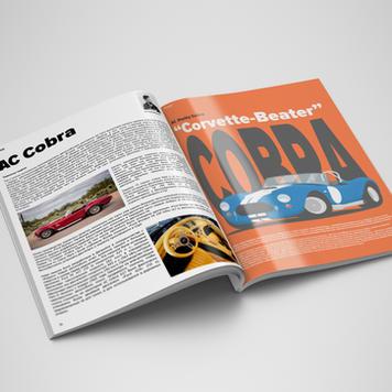 Иллюстрация для журнала на заказ
