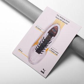 Дизайн фирменного рекламного флаера.