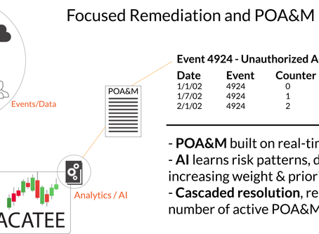 Focused Remediation and Continuous Monitoring
