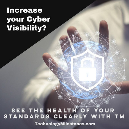 Increase your Cyber Visibility and see the health of your standards in a monthly service