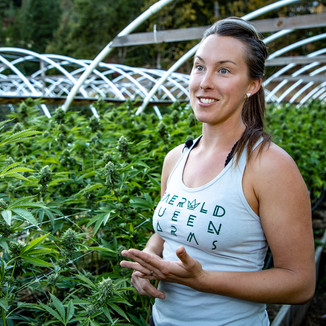 Emerald Queen Cannabis Farm